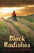 *Black Radishes* by Susan Lynn Meyer- young readers fantasy book review