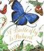 *A Butterfly is Patient* by Dianna Hutts Aston, illustrated by Sylvia Long