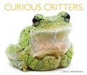 *Curious Critters* by David FitzSimmons