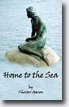 *Home to the Sea* by Chester Aaron - young adult book review