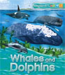 *Explorers: Whales and Dolphins* by Peter Bull and Anita Ganeri - beginning readers book review