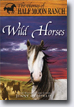 *Wild Horses (Horses of Half Moon Ranch)* by Jenny Oldfield- young readers book review